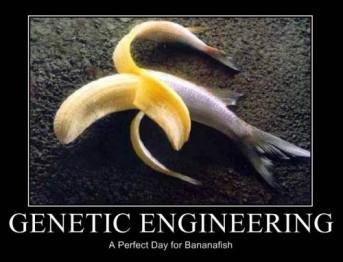 bananafish1